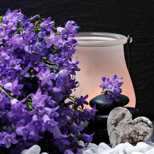 9 Essential Oils for Meditation