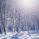 Living in harmony with the seasons: Winter